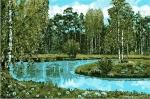 ковер Россия с изображением природы