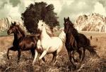 ковры россия с изображением тройки лошадей